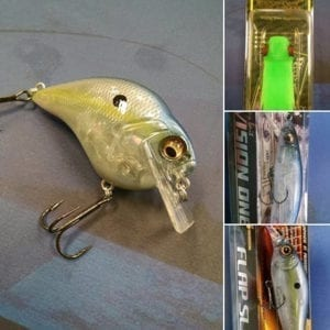 New products. Megabass USA lures and rods. Stocking a line of Vision 110/Vision 110+1's, Flap Slaps, Pony Gabot frogs, Orochi XX rods, and the all new S-Crank 1.2.